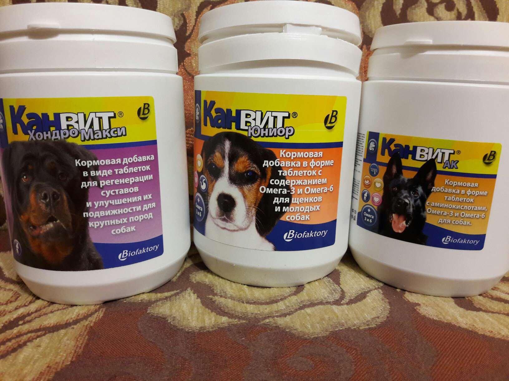 витамины для щенков Canvit Junior