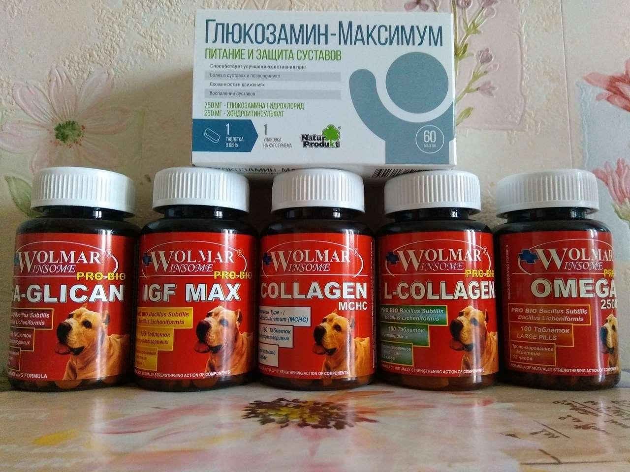 витамины для мелких собак Wolmar Winsome Pro Bio Booster Ca Mini
